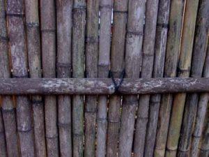bamboo-fence-closeup
