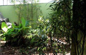 komodo-bamboo-enclosure